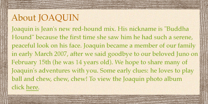 Joaquin is Jean
